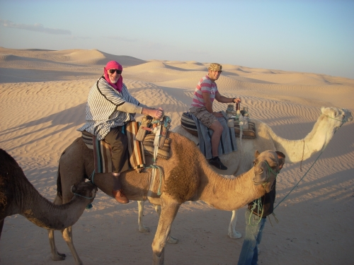 camel-picture-1